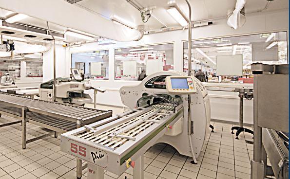 Climatizzazione Ambienti Lavoro - Maxicella sala lavorazione carni