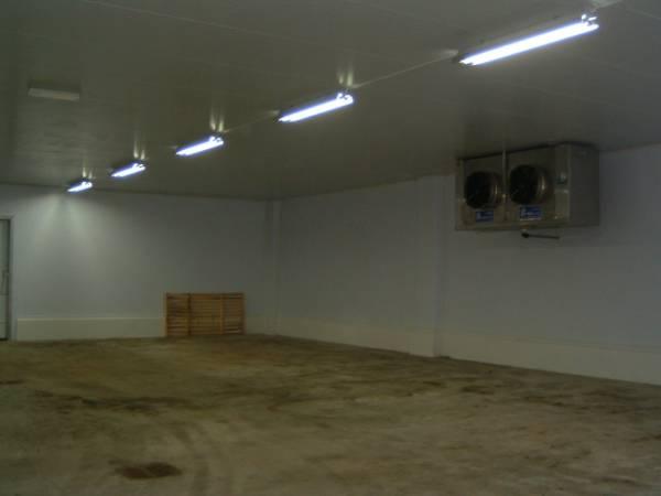 Interno magazzino frigorifero di conservazione pelli grezze con evaporatore