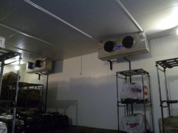 Cella frigo con scaffali porta pallets ed evaportatori