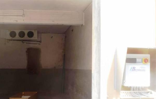 Evaporatore  e centralina di controllo installati  in ambiente per la conservazione di pelli grezze