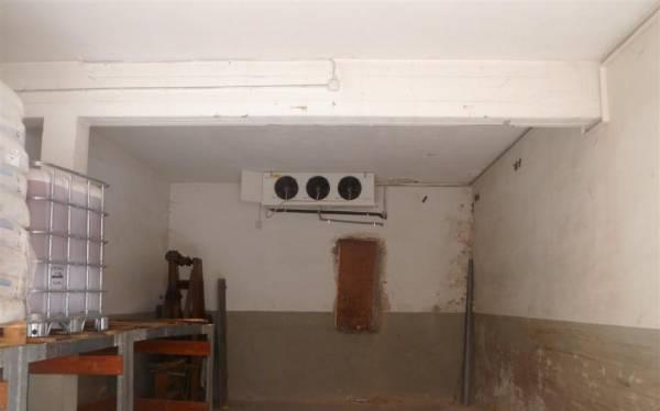 Evaporatore installato in ambiente per la conservazione di pelli grezze