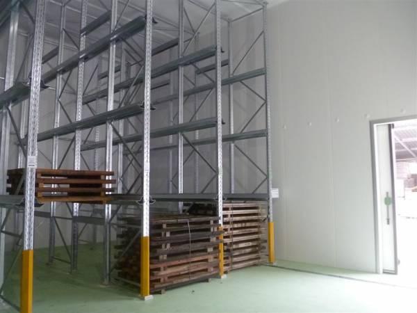 Interno cella frigo conservazione pelli grezzi con scaffali porta-pallets